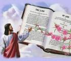 suy niệm lời chúa 1